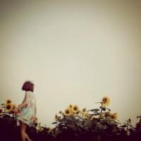 少女と向日葵