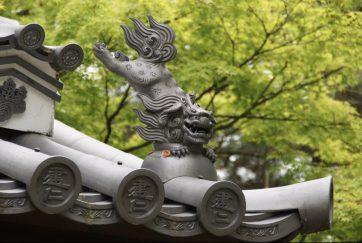 【建仁寺。栄西が開いた京都最初の禅寺。祇園の繁華街の中にありますが、境内に入ると周囲の喧騒がまったく聞こえず静かでとても風情あります。】