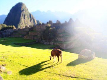 Peru14