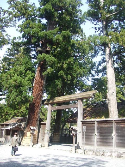 nagase_20111012_6