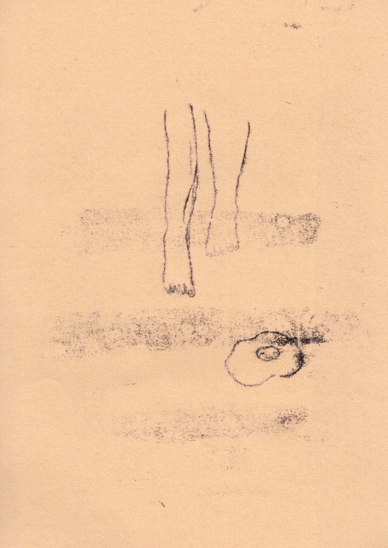 スキャン 13