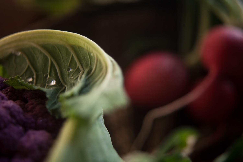 tab el 生命を巡る食の旅 番外編⑦「環境を食べる」