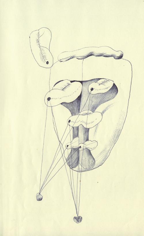 舌のような顔