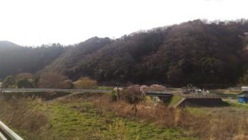 satoyama11