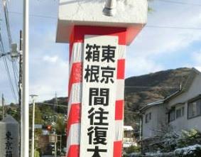秋の蝉と箱根駅伝