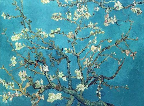 vincent-van-gogh-branches-avec-des-fleurs-damande-1890-huile-sur-toile-92-x-73-5-cm-amsterdam-van-gogh-museum