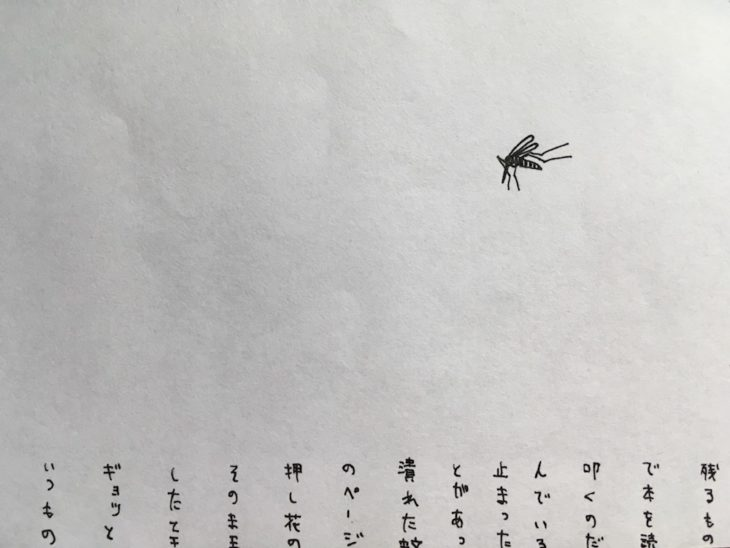 crushedmosquito