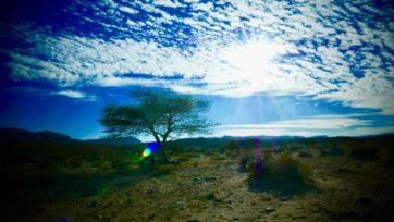 砂漠の時間