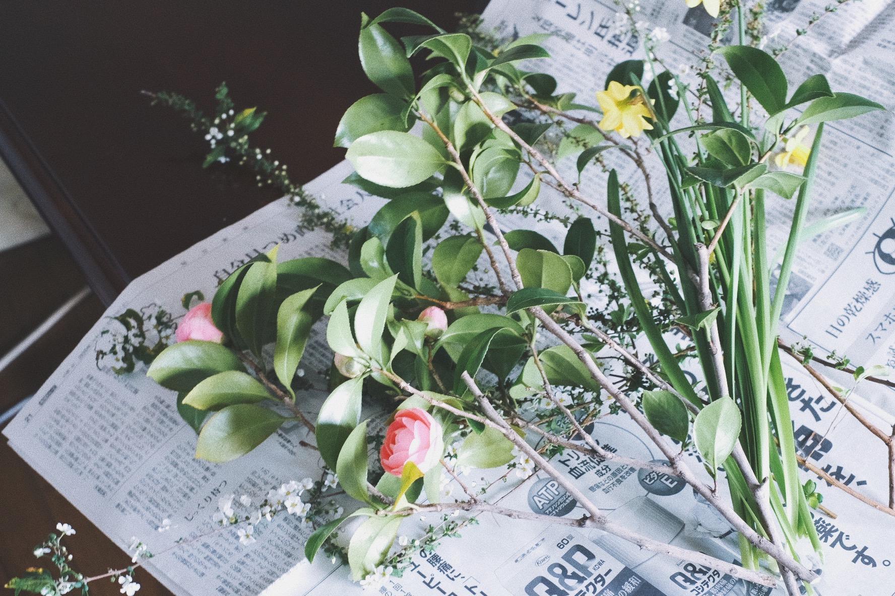暮らしのノイズ6:花を生ける